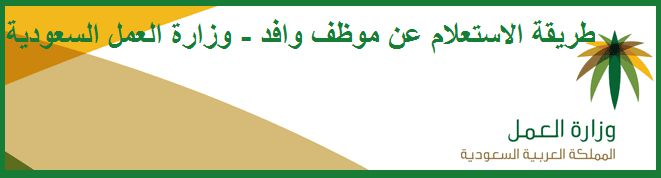 the-saudi-ministry-of-labor-the-electronic-queries